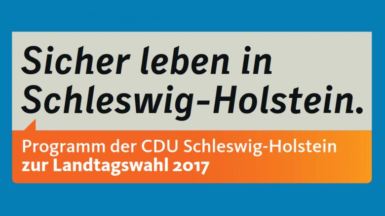 Diskussion zum Landtagswahlprogramm 2017
